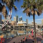 Window View - Criniti's Darling Harbour Photo