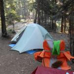 Hodgdon Meadow Campground Foto