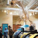 Foto di Port Townsend Marine Science Center