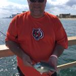 A fat little parrot fish caught on Anglins Fishing Pier.