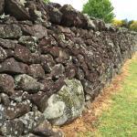 Love those stone walls