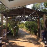 Marura Safaris - Day Tours Foto