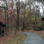 Bluff cabins
