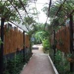 The Kata Orient House