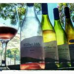 Wither Hills - NZ Wine
