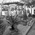 Photo de Presidents' Quarters Inn
