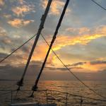 Ocean Sports Sunset Champagne Sail Foto