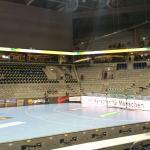 11. 11. 2015 ,  Rhein Neckar Löwen - SC Dhfk Leipzig  ( 1. Handball - Bundesliga )