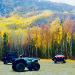 Foto de Alaska All Terrain Tours - Day Tours