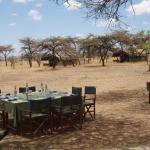comedor bajo las acacias