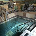 Private Hot Spring Pool