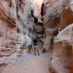 Amazing trails in Valley of Fire