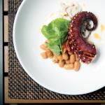 octopus & cuttlefish
