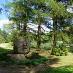 Forest Arboretum in Zielonka