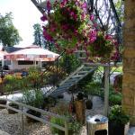 ogródek letni