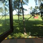 view from room..the lawn and sea beyond..