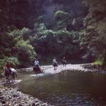 Patuna Farm Adventures