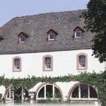 Photo de Hotel Weingut Karlsmuhle