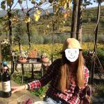 Degustando vinos