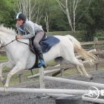 Horse riding lessons in dressage, jumping or cross-country