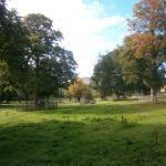 Mortonhall Caravan and Camping Park Foto
