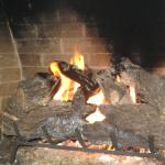 one of the fireplaces (gas but looks like logs)