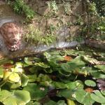 Folon e il Giardino delle Rose Foto