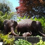 The Willow Elephant Family