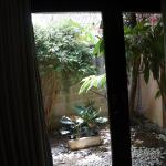 View to side courtyard from main bedroom