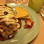 Delicious wet chicken burrito