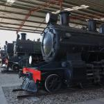 Just a few of numerous locomotives on display.