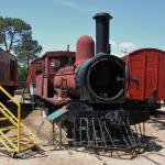 One of 20+ locomotives on display