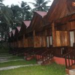 Log Huts at the Hotel