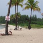 beach photo opp