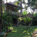 Habitaciones y jardin