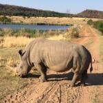 Photo de Legend Golf and Safari Resort