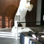 Polar Bear in main foyer
