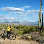 MTB in Northern Scottsdale AZ