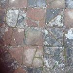 medieval tiles in St Dogmaels Abbey