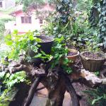 Photo de The Log Nuwara Eliya