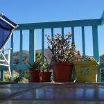 Foto de La Paloma Cottages Las Flores