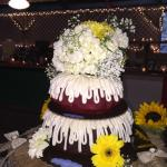 What an amazing wedding cake!