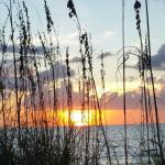 Sea Club Sunset w/Sea Oats