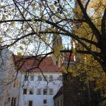 Albrechtsburg Foto
