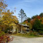 Peak Fall Color at the Inn on Mill Creek
