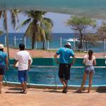 Centro Mexicano de la tortuga ECOTUR
