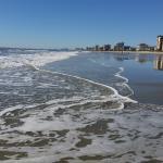 Photo de Wyndham Ocean Boulevard