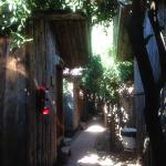 Photo of Bayrams Tree Houses