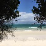 Foto di Leisure Lodge Beach and Golf Resort