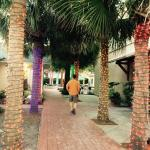 Cobblestone paths and lighted Palm trees